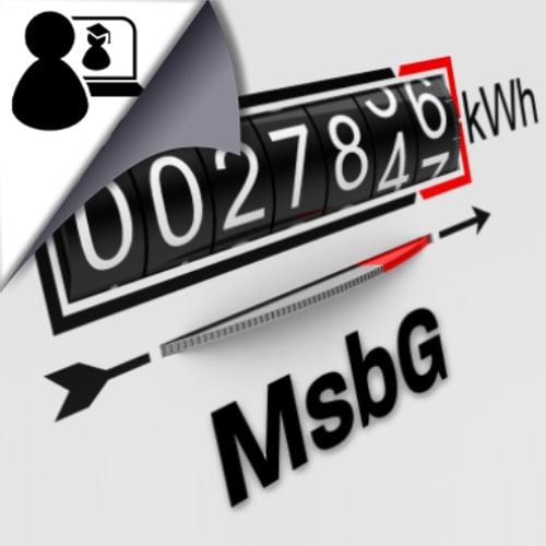 Messstellenbetriebsgesetz (MsbG) (Online)