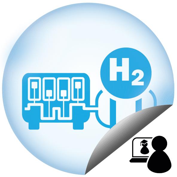 Technische Aspekte einer Wasserstoffnutzung in Motoren